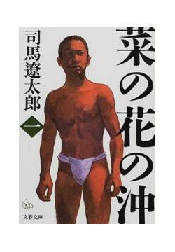 菜の花の沖 司馬遼太郎